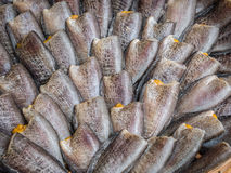 Высушенные рыбы местной еды на открытом рынке стоковая фотография