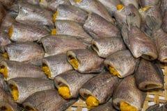 Высушенные рыбы на бамбуковой корзине стоковое фото