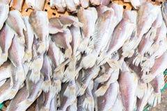 Высушенные рыбы на бамбуковой решетке стоковые изображения