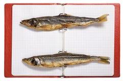 высушенные рыбы на листах тетради Стоковое Изображение RF