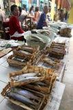 высушенные рыбы Стоковое Изображение