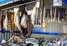 высушенные рыбы Стоковые Изображения