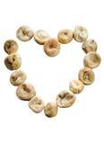 Высушенные смоквы в форме изолированного сердца Стоковое Изображение RF