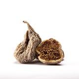 Высушенные смоквы от индюка egean 2 Стоковые Изображения RF