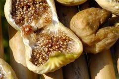 высушенные смоквы Стоковые Фото