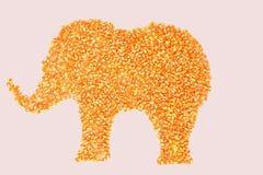Высушенные стержени мозоли помещены в слоне Стоковое фото RF