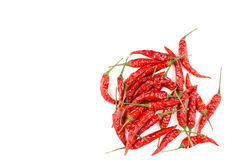Высушенные тайские перцы chili изолированные на белой предпосылке Стоковая Фотография RF