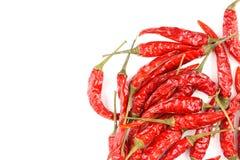 Высушенные тайские перцы chili изолированные на белой предпосылке Стоковые Фото