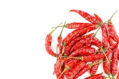 Высушенные тайские перцы chili изолированные на белой предпосылке Стоковая Фотография
