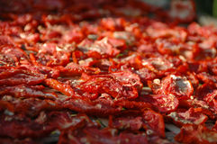 высушенные томаты Стоковые Изображения