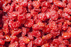 Высушенные томаты Стоковое фото RF