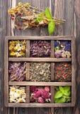 Высушенные травы и цветки стоковая фотография rf