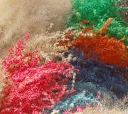 высушенные травы Стоковая Фотография