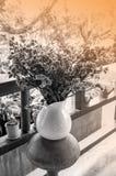 Высушенные цветки в украшении вазы Стоковые Фото