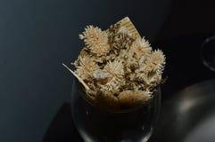 Высушенные цветки помещенные в бутылках стоковая фотография rf