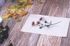 Высушенные цветки с листьями осени на деревянной предпосылке Стоковая Фотография