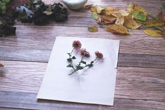 Высушенные цветки с листьями осени на деревянной предпосылке Стоковые Фотографии RF