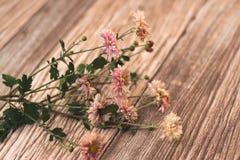 Высушенные цветки с листьями осени на деревянной предпосылке Стоковое фото RF