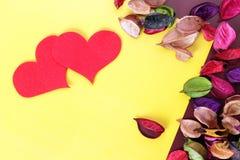 высушенные цветки Стоковая Фотография RF
