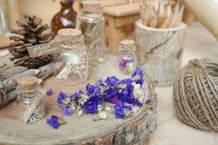 Высушенные цветки Statice на деревянном пне стоковое изображение rf