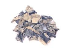 Высушенные черные грибок или polytricha Auricularia стоковая фотография