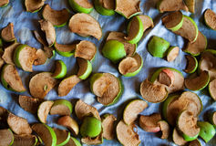 высушенные яблоки Стоковые Фотографии RF