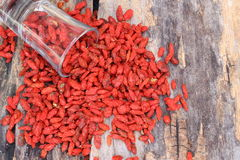 высушенные ягоды goji Стоковое фото RF