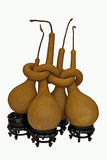 высушенные calabashes Стоковое Фото