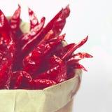 высушенные chilies Стоковые Изображения