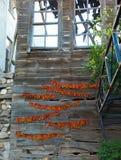 Высушенные chillis, Turkye Стоковые Фото