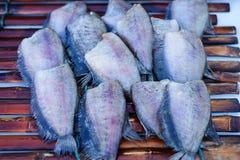 Высушенные fishs местной еды на открытом рыбном базаре Таиланде Стоковое Изображение