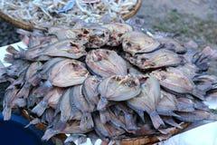 Высушенные fishs местной еды Стоковые Фотографии RF