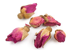 высушенные rosebuds Стоковые Изображения