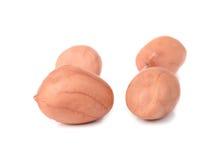 Высушенный арахис изолированный на белой предпосылке стоковое изображение rf