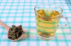 Высушенный бальзам лимона с ложкой и стеклом травяного питья на скатерти стоковые фото