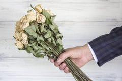 Высушенный букет белых роз в руке Стоковая Фотография