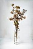Высушенный букет полевых цветков и трав в бутылке Стоковая Фотография