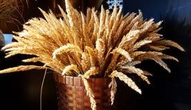 Высушенный букет цветка в фото корзины Стоковая Фотография