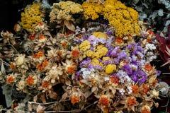 Высушенный букет цветков от магазина Стоковые Изображения