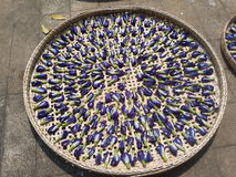 Высушенный горох бабочки Стоковые Фотографии RF