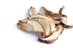 Высушенный гриб Shitake Стоковое Изображение RF