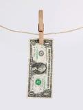 высушенный доллар счета Стоковое Изображение
