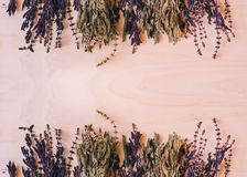 Высушенный зеленый цвет и пурпурный базилик стоковое фото rf