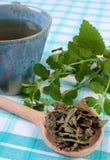 Высушенный и свежий бальзам лимона, чашка травяного напитка на скатерти стоковая фотография