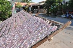 Высушенный кальмар или высушенный calamari на сетчатом подносе в процессе методов еды засыхания Солнця Консервация еды схематичес стоковые изображения
