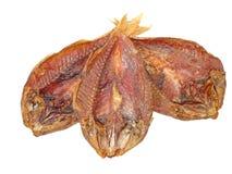 3 высушенный крупный план принятый goatfish изолировано Стоковая Фотография RF
