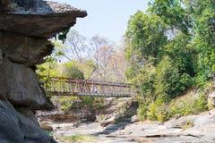 высушенный мост реки Стоковые Фото