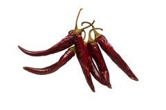 Высушенный накаленный докрасна изолированный перец chili Стоковое фото RF