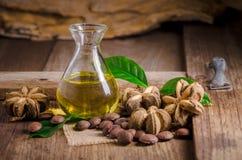 высушенный плодоовощ семян капсулы арахиса sacha-Inchi на деревянном столе стоковое изображение