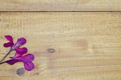 Высушенный розовый цветок на деревянном столе Стоковые Изображения RF